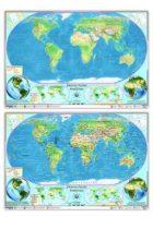 Ankara Yayıncılık Dünya Fiziki Haritası (Yazılabilir Silinebilir)